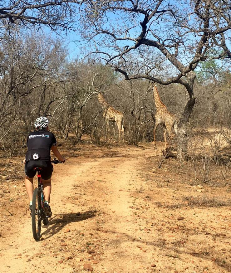 Cycling Safari Bidong Fietsvakantie